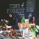 Co-founder Anum Fawzia inspecting the plants